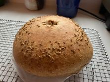 1st Bake